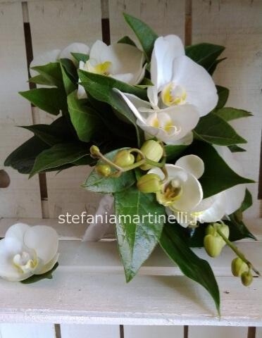 Bouquet Da Sposa Orchidee.Bouquet Da Sposa Orchidea Phalenopsis Bianca Stefania Martinelli